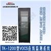 山东新泽TK-1200型VOCS在线监测系统