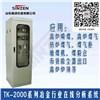 冶金工业TK-2000高炉炉顶煤气分析系统